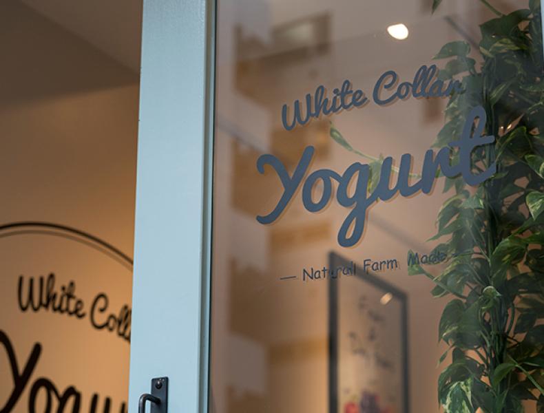店舗デザイン実績|White Collor Yogurt 様 イメージ画像6